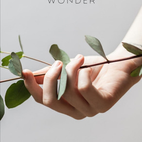 Book Feature: Tanya S. Thamkruphat 'EM(BODY)MENT of WONDER'