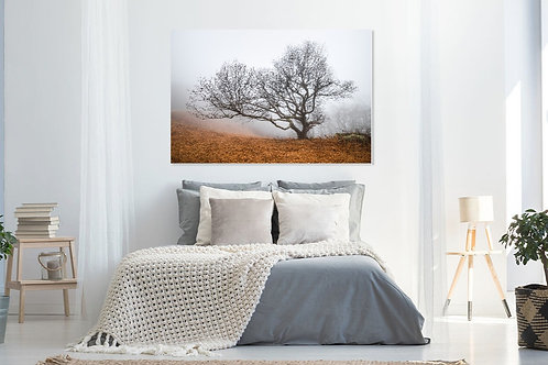 Metal or Canvas Print: Parkway Guardian