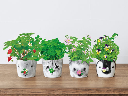 Seishin 動物盆栽陶瓷杯 HANA & ANIMALS 日本