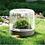 Thumbnail: 雨林瓶 Sanctuary-S 苔蘚盆景 自然生態瓶 家居種植 辦公室種植 澳洲設計