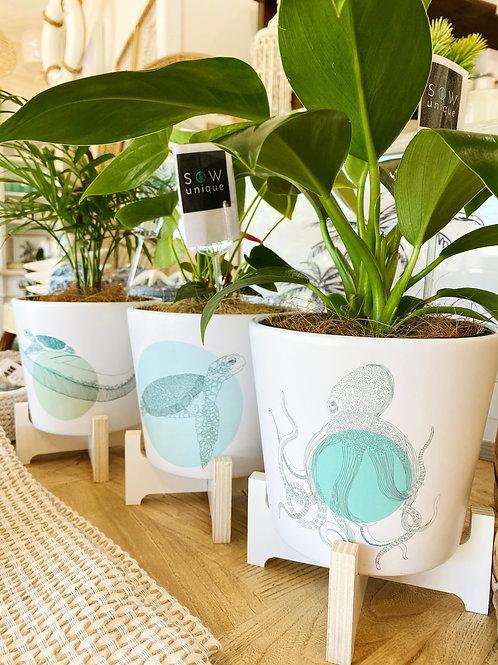 Buoyant Sea Pots - 3 Designs