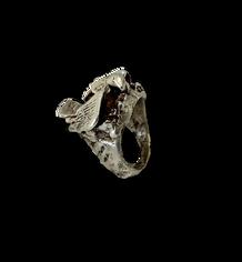 Bird ring.png