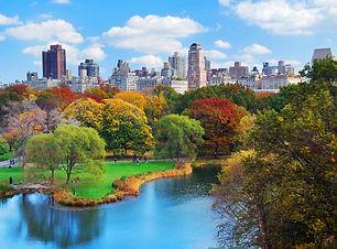 park-centralpark2.jpg