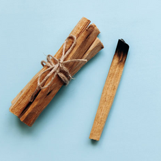 Fab Fit Fun-Why Everyone Is Burning Palo Santo