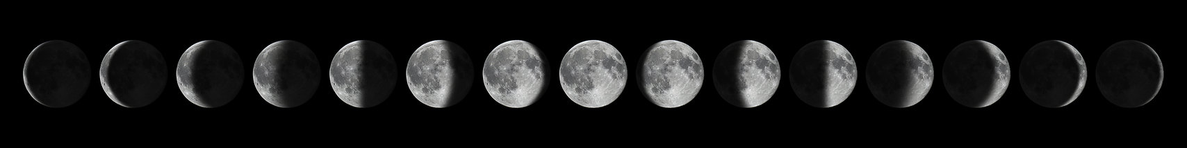Phases of the Moon Website.jpg