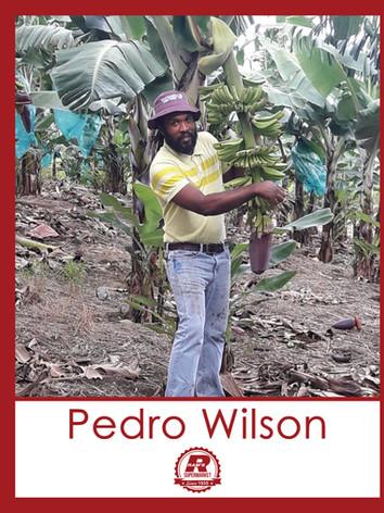 Pedro Wilson.jpg
