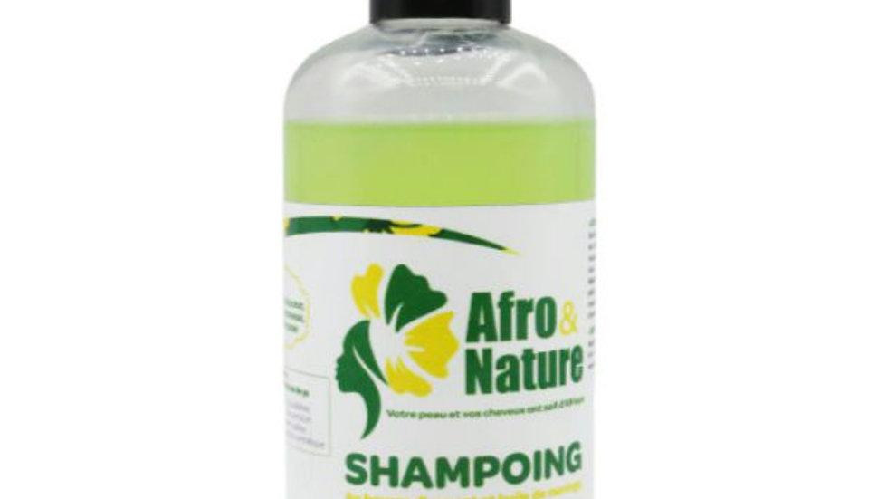 Shampoo with avocado oil and parsley