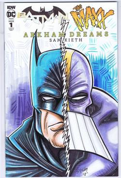 batman maxx sketch cover