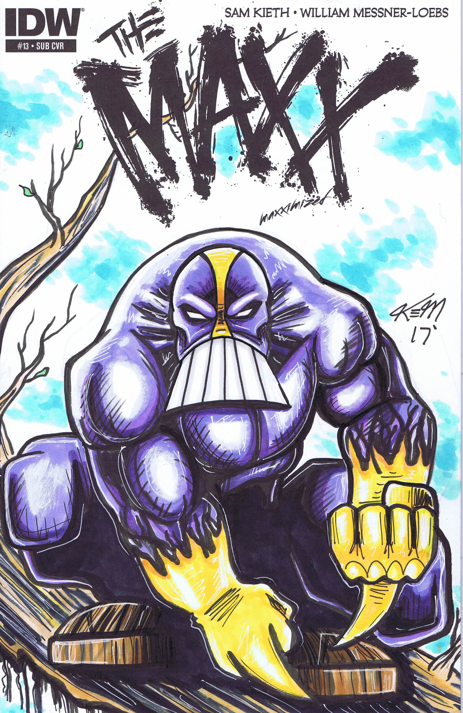 maxx sketch cover