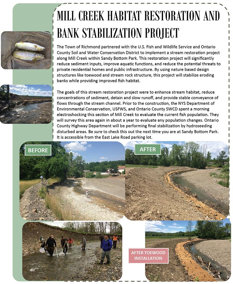 streambank stabilization.png