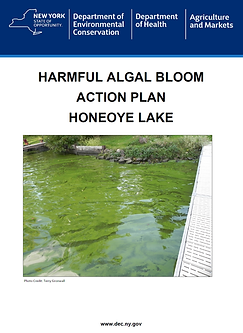 Habs Action Plan.png