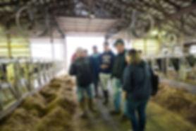 2018.04.25 Stanley NY Lawnhurst Dairy Fa