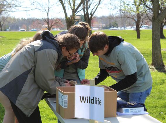 Wildlife Station