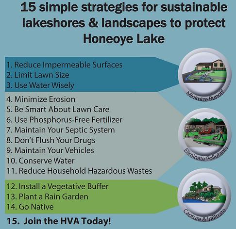 lake friendly living tips.PNG
