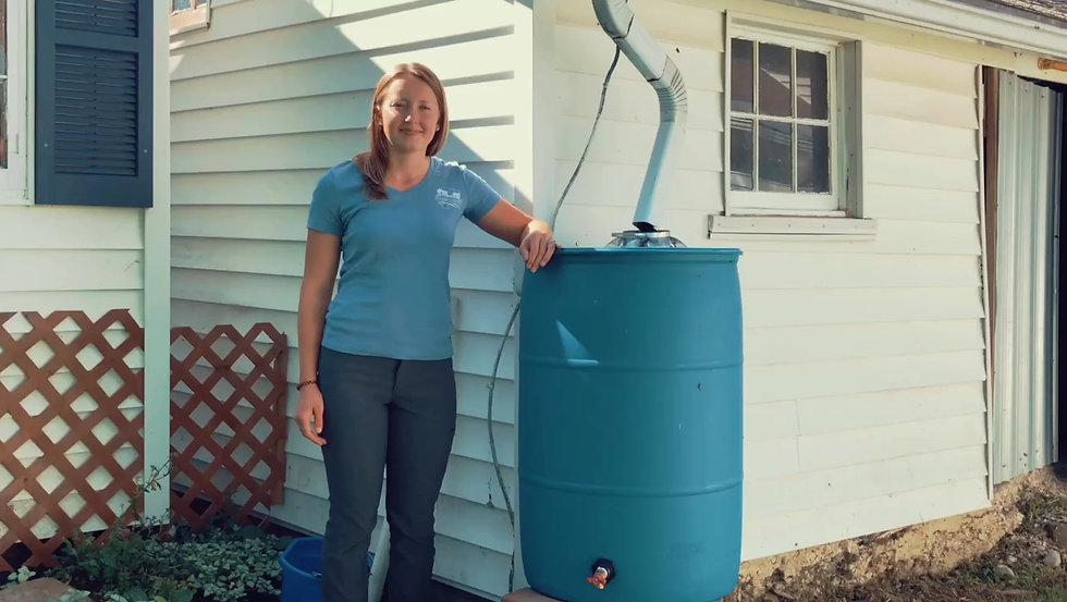How to set-up your rain barrel