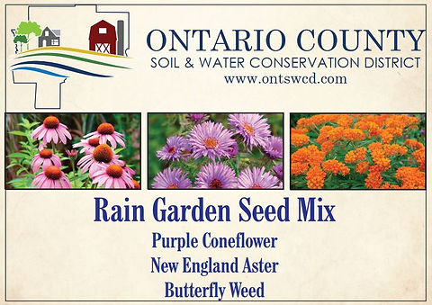 Seed Packet Front.JPG