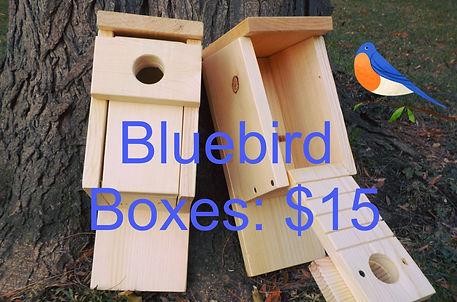 Bluebird Boxes through Ontario County SW