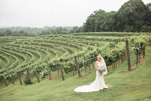 Our Wedding (264) copy.jpg