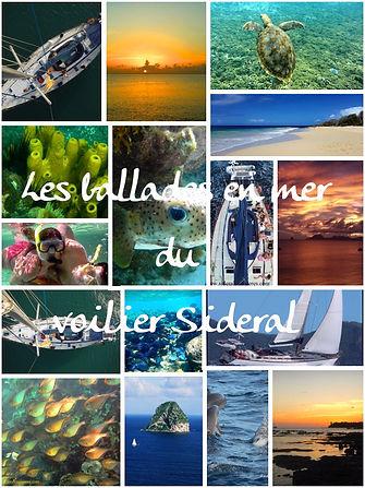 sorties_journée_2_edited.jpg