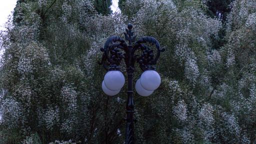 Poste de luz en jardines