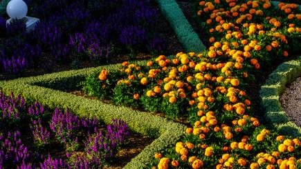 Decima terrazza - I giardini