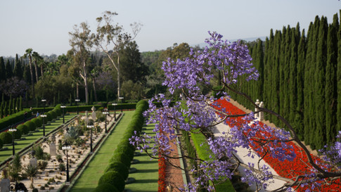 Gardens, view from the Mansion