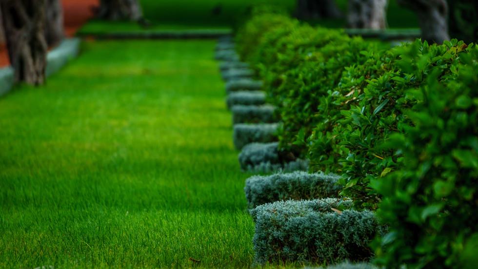 Giardini circostanti