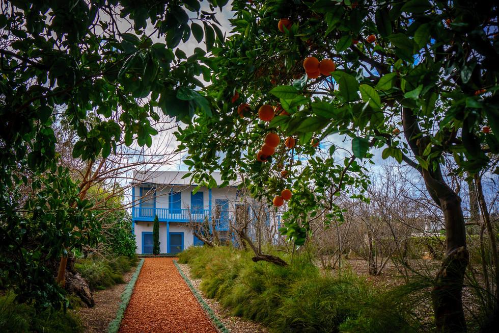 Camino que lleva a la residencia donde Bahá'u'lláh solia quedarse