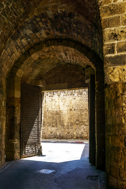 Portón Terrestre