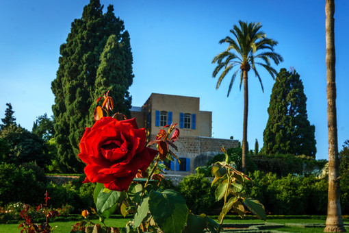 Rose nei giardini, Magione sullo sfondo