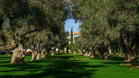 Vista de la Mansion y jardines