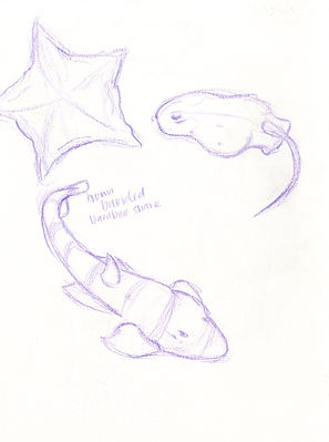 Sketch43.JPG