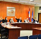 town council.jpg