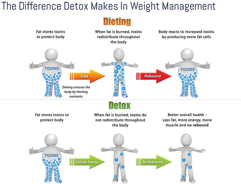 Detox Weight Loss Program