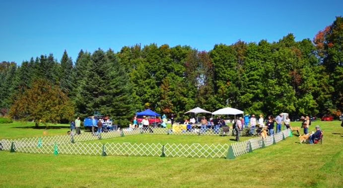 Champlain Valley Kennel Club Match