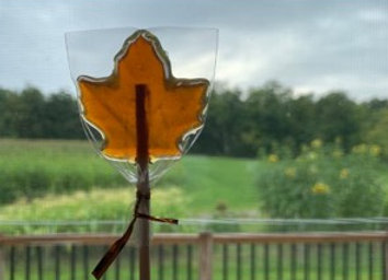 Maple Leaf Lollipop (10)