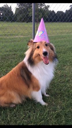 Happy Birthday Ellie!