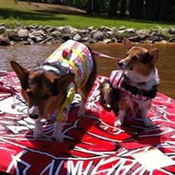 Paisley and Presley