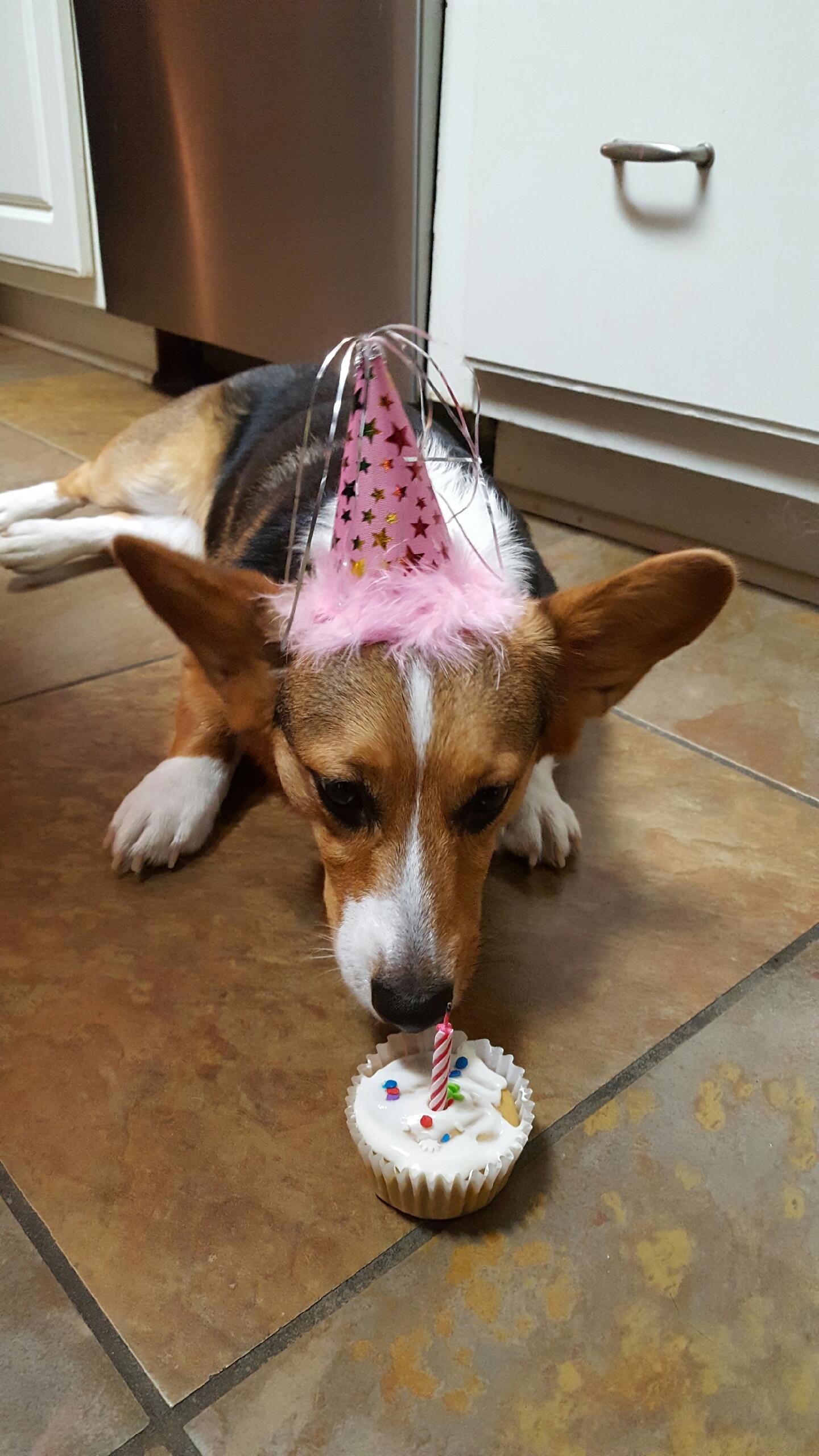 Martha's First Birthday