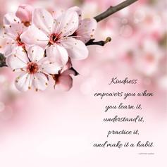 Kindness Habit Instagram Post.jpg