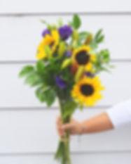 sunflower small.jpg