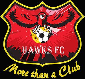 Hawks FC 2018.jpg