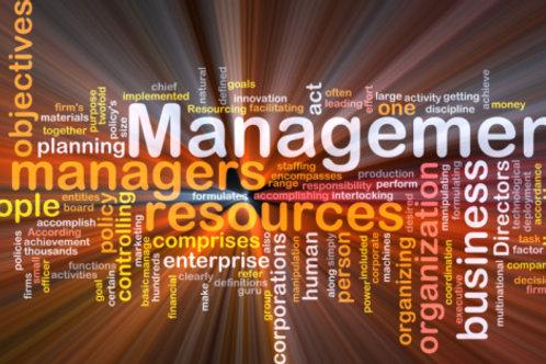 Business Management University Foundation (Level 3)
