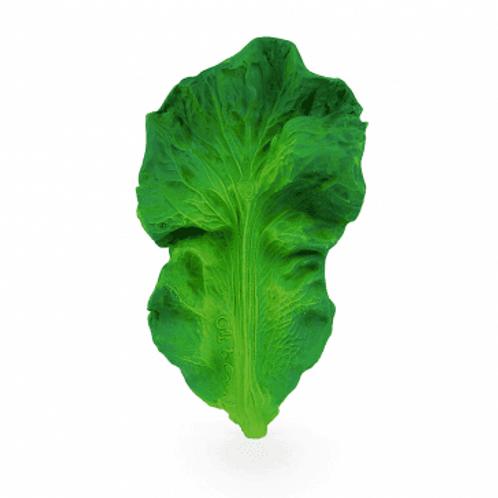 Mordedor Kale - Oliandcarol
