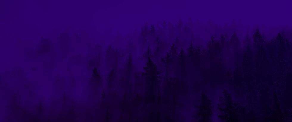 BG_forest1_w2000-v1.jpg