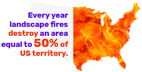 Landscape fires destroy an area equal to 50% of US territory every year.png