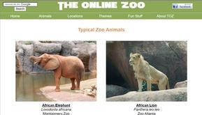 孩子居家自學好夥伴 線上動物園The Online Zoo全年無休 近距離認識各類動物無國界