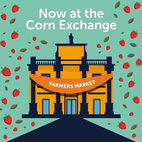 Autumn Farmers Markets