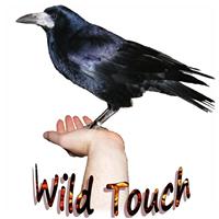 Wild touch - FAIRY FAIR