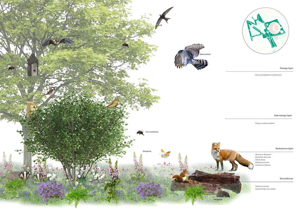 ecological moment.jpg